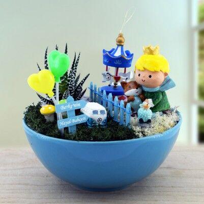 - Dekoratif Minyatür Düşler Bahçesi