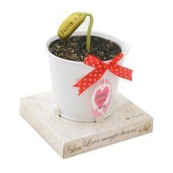Seni Seviyorum Yazısı Açan Sihirli Çiçek - Thumbnail