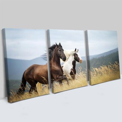 - At Tasarımlı 3 Parça Kanvas Tablo