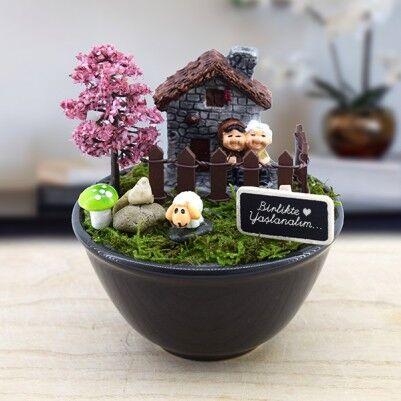 - Bir Ömür Birlikteyiz Minyatür Bahçe