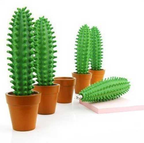 Cactus Pen - Kaktüs Kalem