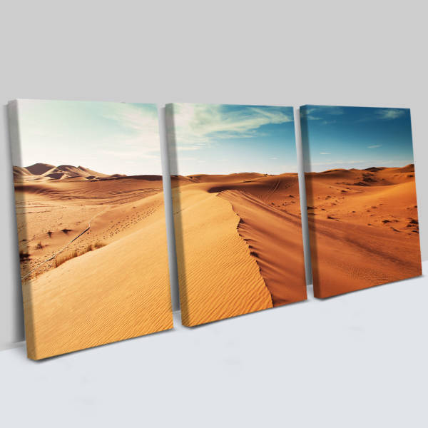 Çöl Manzaralı 3 Parça Kanvas Tablo