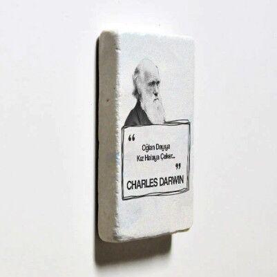 Darwin Esprili Taş Buzdolabı Magneti - Thumbnail