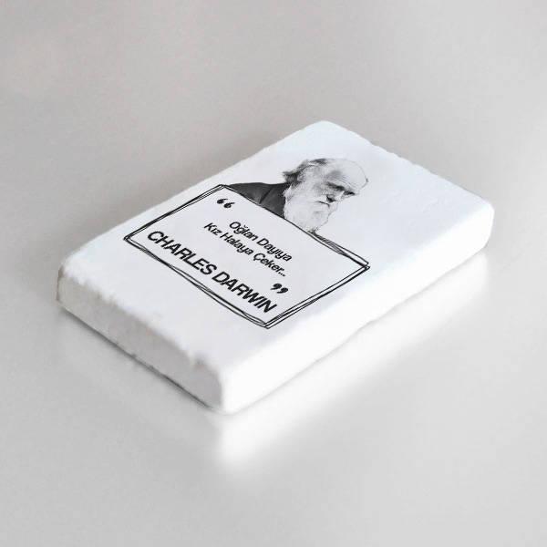 Darwin Esprili Taş Buzdolabı Magneti
