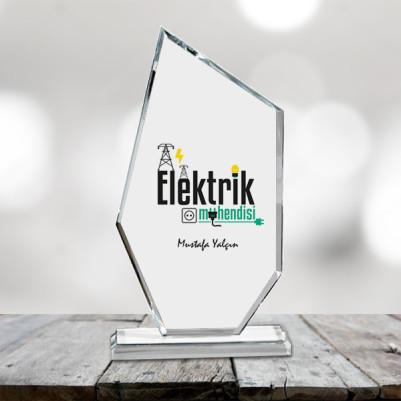 - Elektrik Mühendislerine Özel Ödül