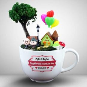 - Hayallerinin Peşinden Koş Mini Bahçe