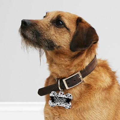 İsme Özel Siyah Beyaz Köpek İsimliği - Thumbnail