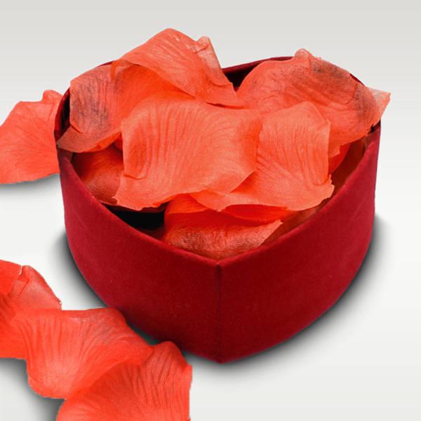 Kalp Kutuda Kırmızı Gül Yaprakları
