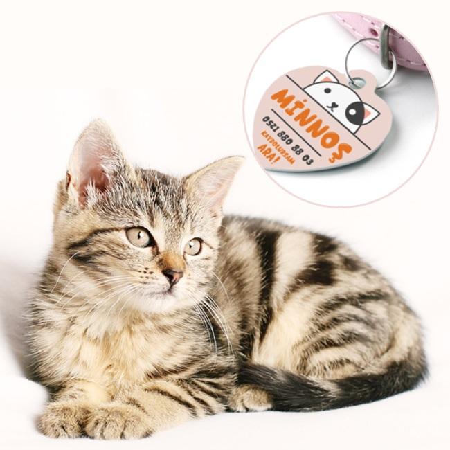 Kedilere Özel İsim Yazılı Künye