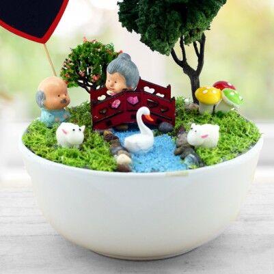 Kişiye Özel Yaşlansak da Beraberiz Mini Bahçe - Thumbnail