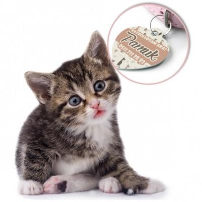 Özelleştirilebilir Kedi İsimliği - Thumbnail