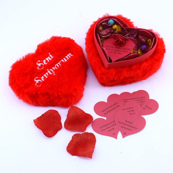 Seni Seviyorum Peluş Kalp Kutuda Aşk Mesajları