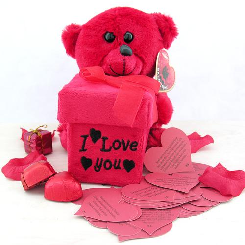 Sevgiliye 365 Aşk Mesajı Taşıyan Ayıcık