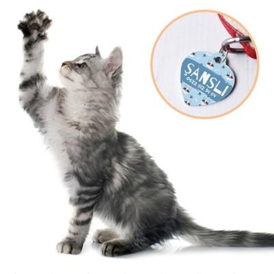 - Sevimli Kedicikler İsimli Kedi Künyesi