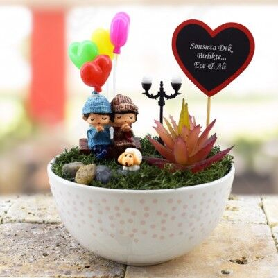 - Tatlı Romantik Hayaller Minyatür Bahçe