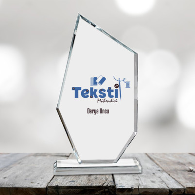 - Tekstil Mühendislerine Özel Ödül