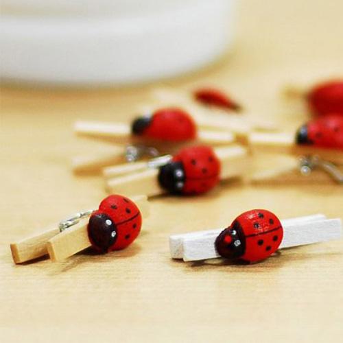 Uğur Böceği Mini Mandallar