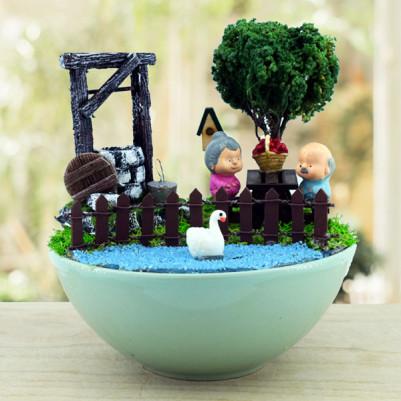 - Yaşlı Çiftler Piknikte Mini Bahçe