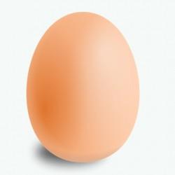 Zıplayan Yumurta Top - Bouncing Egg - Thumbnail